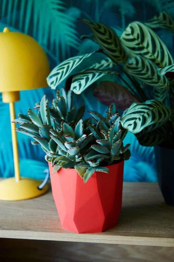 Elho b.for Rock grijs plantenpot
